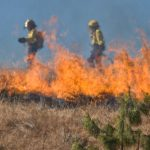 Fire fighter backburning