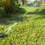 Automatic garden sprinkler