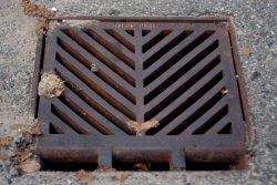 Old rusty drain cover with leaves caught in the top