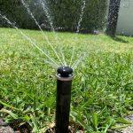 Grass automatic irrigation system