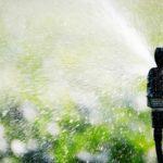Garden Sprinkler — North Coast Power & Water in Coffs Harbour, NSW